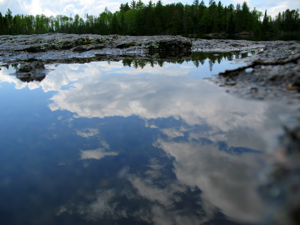A reflection photo into a small pool of water in the BWCA.