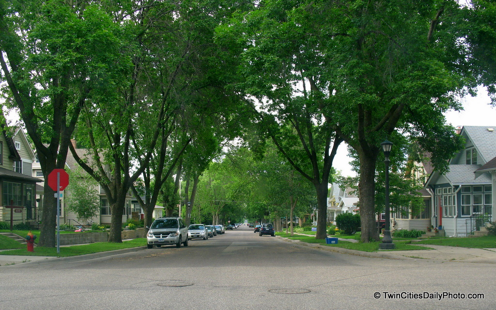 A typical city street in St Paul. This photo is from the West Side neighborhood. I believe I was on Manomin Avenue and Winona Street looking North.